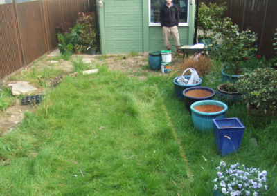 planting-turfing-gallery-2