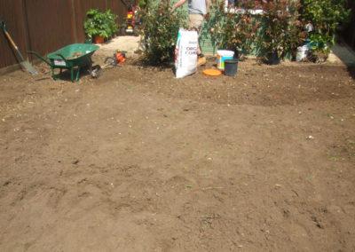 planting-turfing-gallery-3